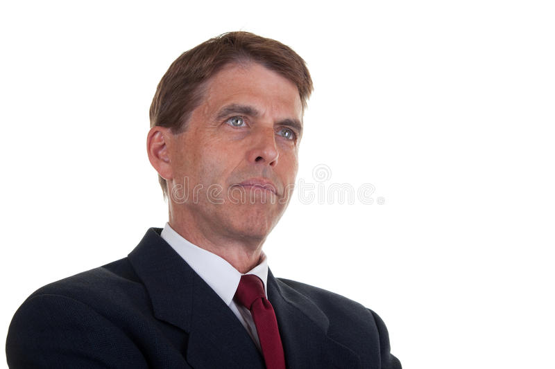 Download Handsome Businessman stock image. Image of caucasian - 19185487