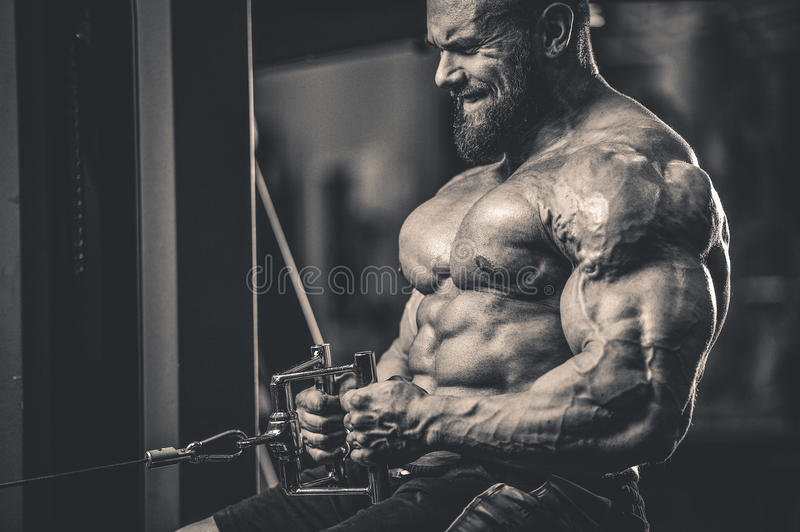 Handsome caucasian athlete muscular fitness male model execute e royalty free stock images