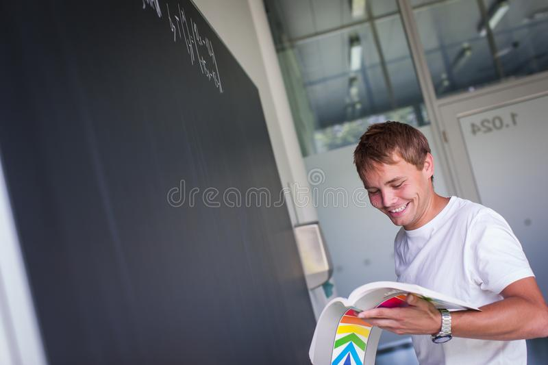 Handsome college student solving a math problem royalty free stock photos