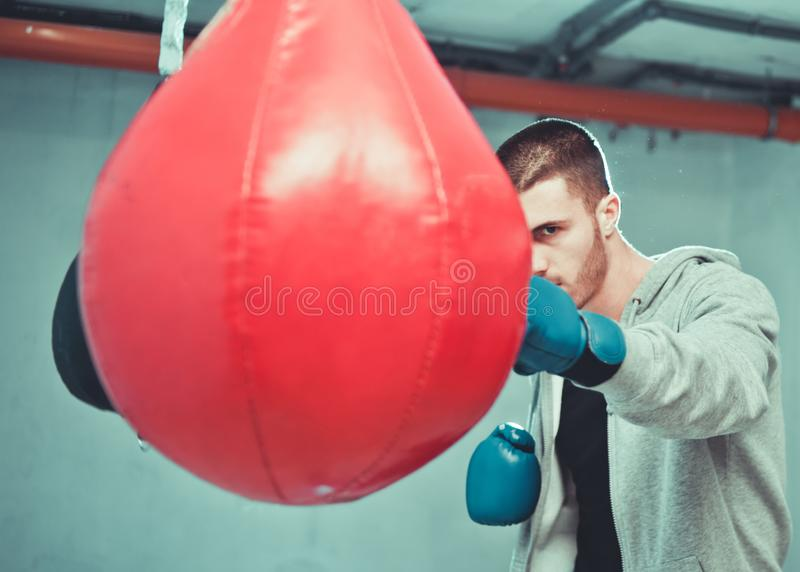 Handsome concentrated male boxer trains hand punches. With a punching bag stock photography
