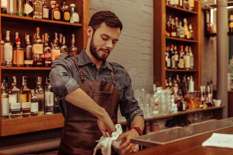 Handsome dark-haired bearded adult bartender polishing glasses at the bar stock photography