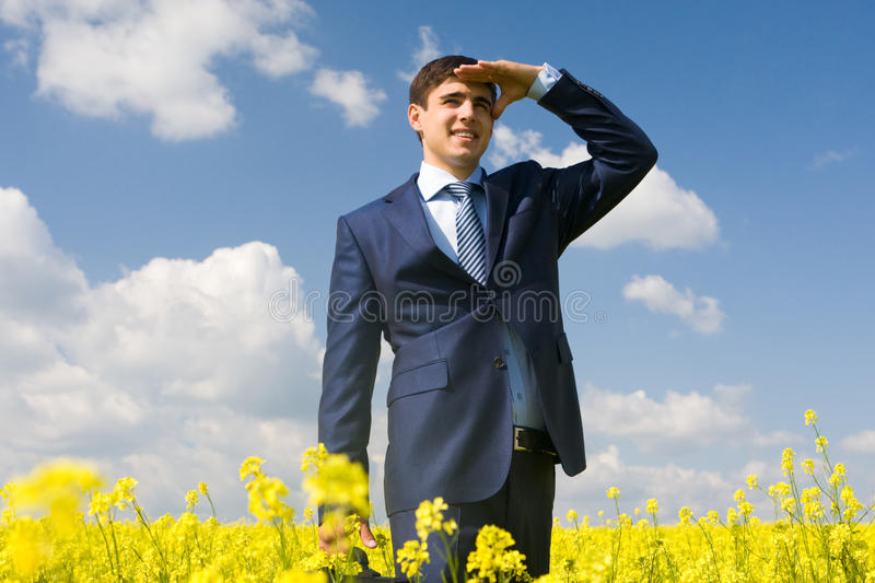 Download Handsome employer stock photo. Image of field, natural - 11620776