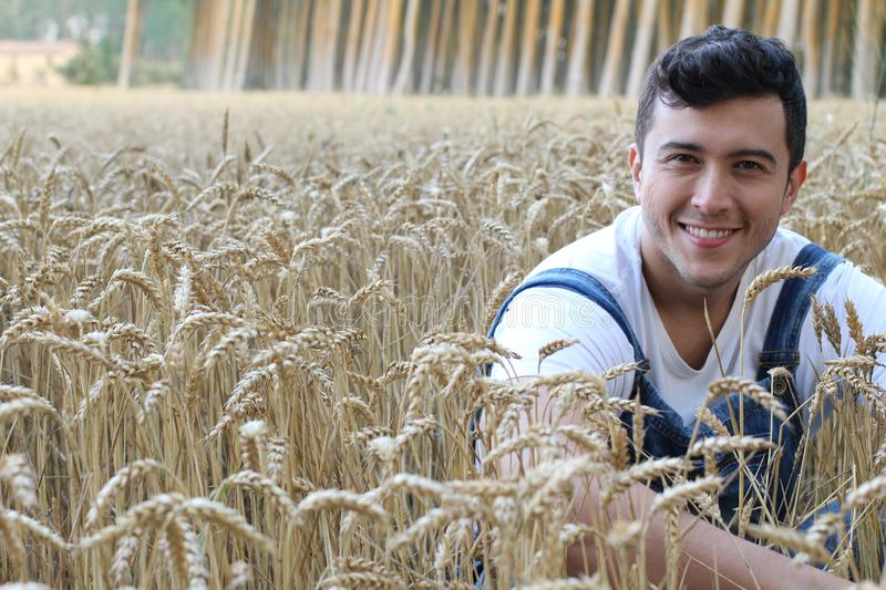 Handsome ethnic farmer in wheat field royalty free stock photography