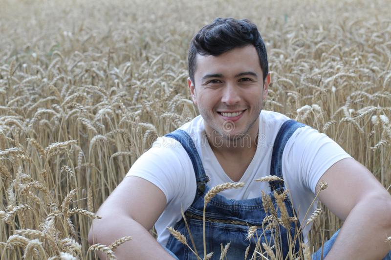 Handsome ethnic farmer in wheat field stock photos