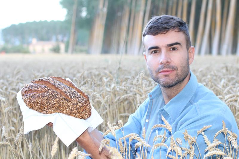 Handsome farmer holding bread in wheat field stock images