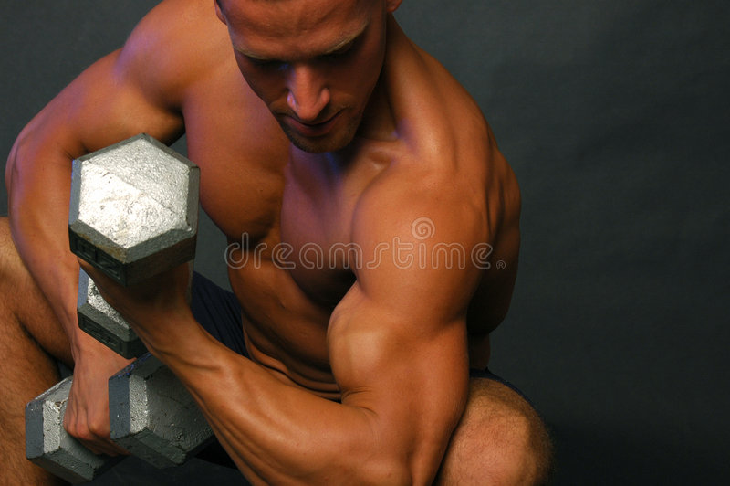 Download Handsome Fitness man 2 stock image. Image of male, bicep - 2312039