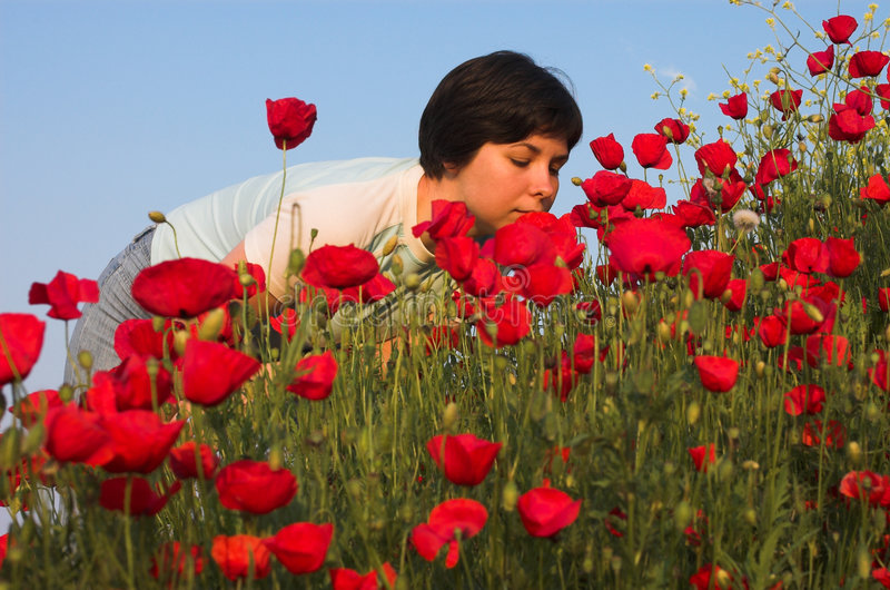 Download Handsome Girl Smells Poppies Stock Image - Image: 971761