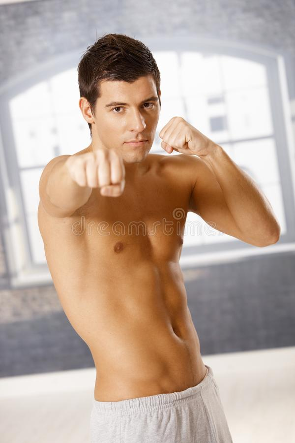 Handsome guy in boxing pose