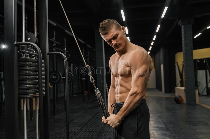 Handsome guy training triceps in gym pumping up body bodybuilding. Athlete royalty free stock images