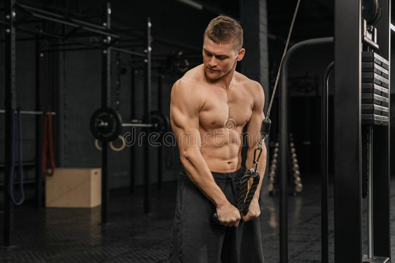 Handsome guy training triceps in gym pumping up body bodybuilding athlete stock photos
