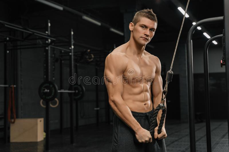 Handsome guy training triceps in gym pumping up body bodybuilding athlete stock photo