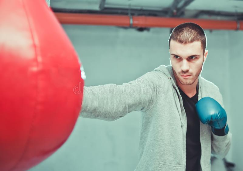 Handsome male boxer trains royalty free stock photos