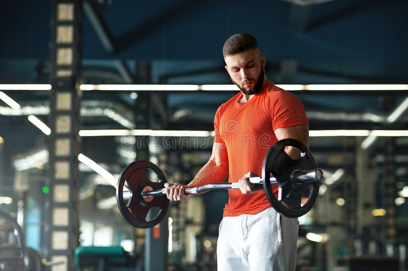 Handsome man with big muscles, posing at the camera in the gym royalty free stock image