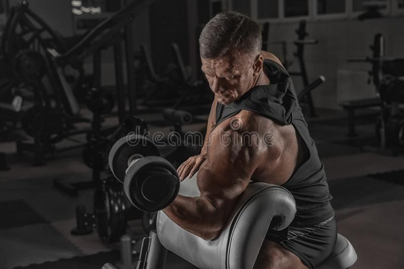 Handsome man with big muscles trains in the gym, exercises stock photos