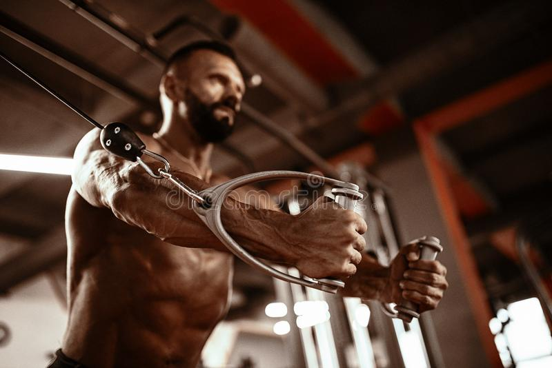 Handsome man with big muscles working out in gym. Muscular bodybuilder doing exercises. stock photo