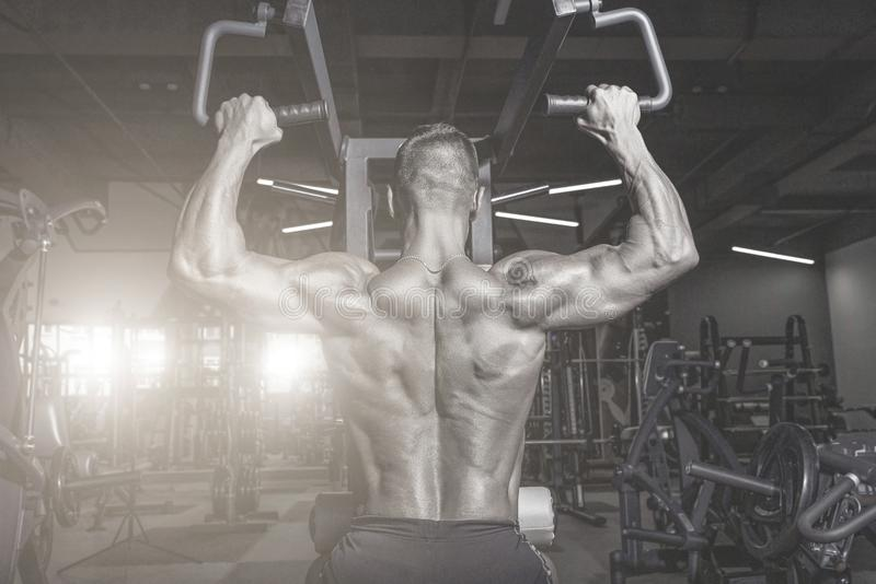 Handsome man with big muscles working out in gym. Muscular bodybuilder doing exercises. stock image
