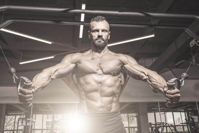 Handsome man with big muscles working out in gym. Muscular bodybuilder doing exercises. royalty free stock photos