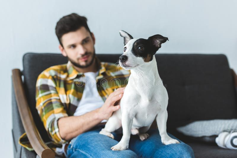 handsome man in checkered shirt sitting on sofa royalty free stock images