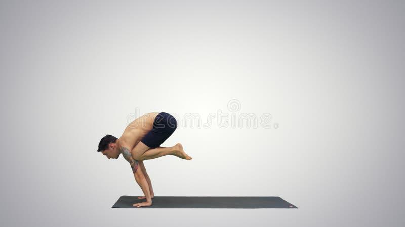 Handsome man doing yoga asanas on gradient background. royalty free stock photo