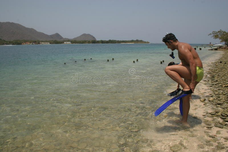 A handsome man getting ready to snorkeling in a beautiful beach in the Caribbean royalty free stock photos