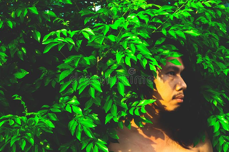 Handsome man with long hairstyle posing with plant with filter effect. Style and fashion stock photo