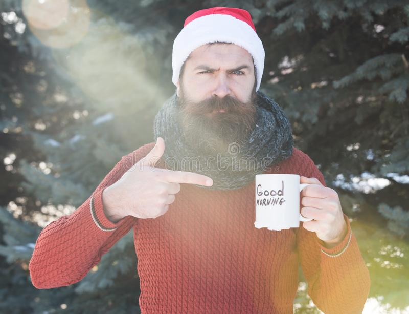 Handsome man in santa claus hat, bearded hipster with beard and moustache points finger at cup with good morning text on. Sunny winter day outdoors on natural royalty free stock images