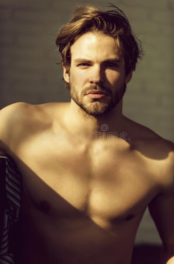 Free Handsome Man With Beard Or Muscular Macho Stock Photos - 129268703