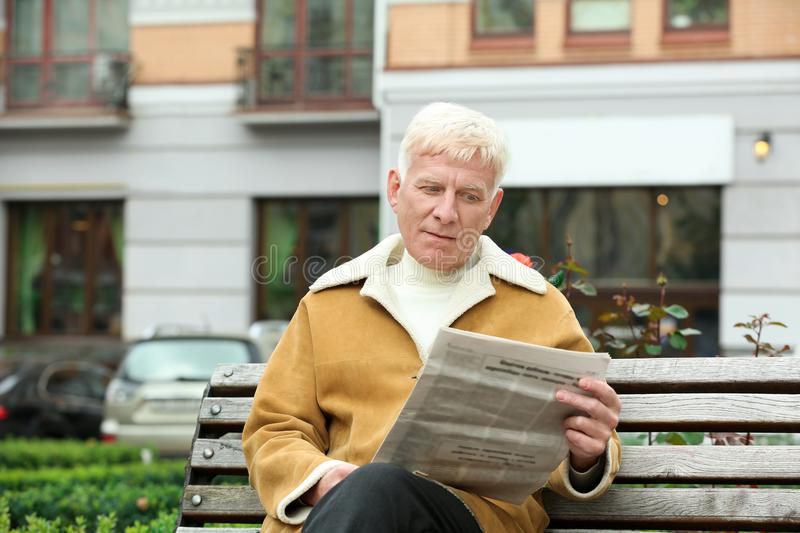 Handsome mature man reading newspaper on bench royalty free stock photos