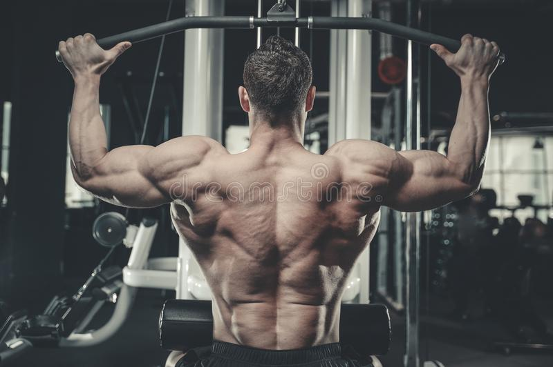 Handsome model young man training back in gym stock image