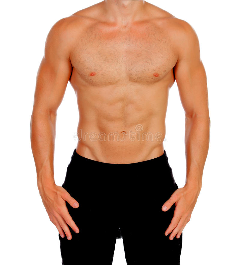 Handsome muscled men. Isolated on a white background royalty free stock images