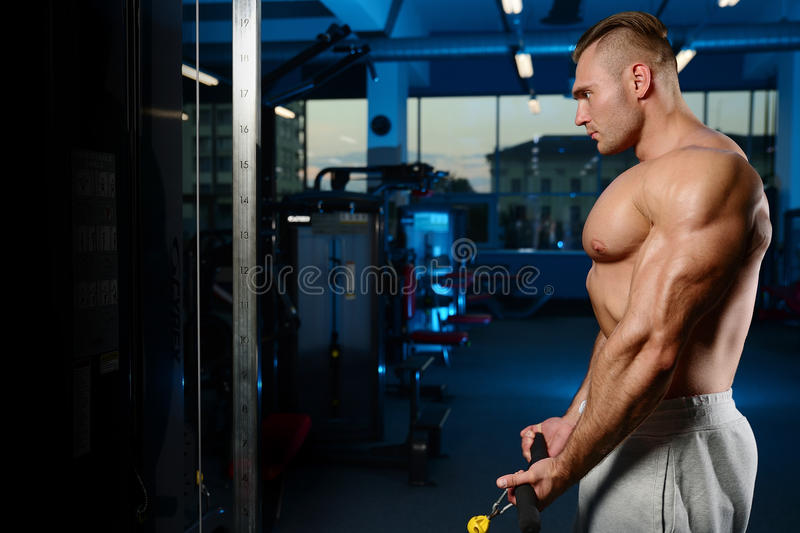 Handsome muscular bodybuilder man doing exercises in gym royalty free stock image