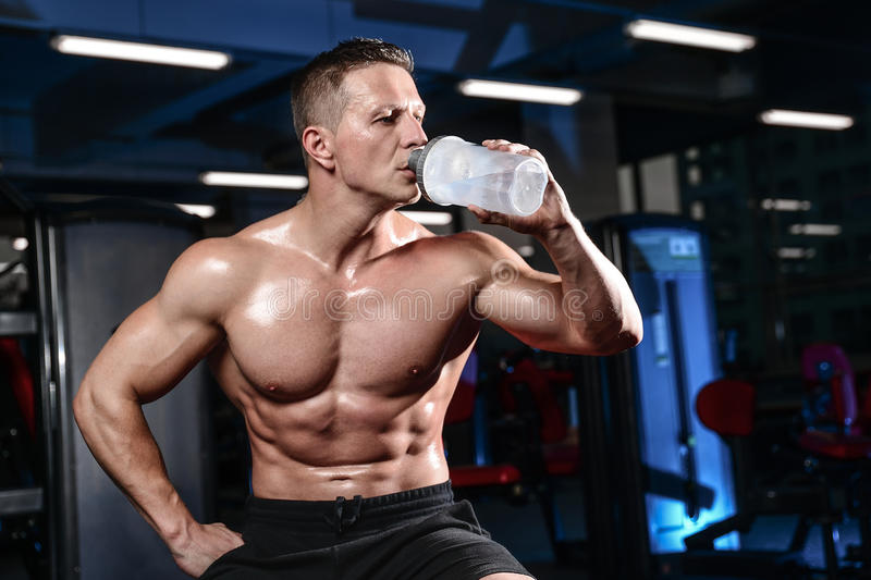 Handsome muscular bodybuilder man doing exercises in gym. Fitness strength training workout bodybuilding concept background - muscular bodybuilder handsome man royalty free stock photography