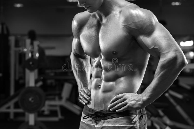 Handsome muscular man abs in gym, shaped abdominal. Strong male torso, working out stock image