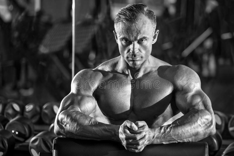 Handsome muscular man in gym, working out. Strong bodybuilder male stock photography