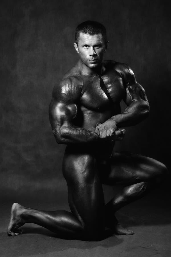 Handsome muscular man kneeling stock images