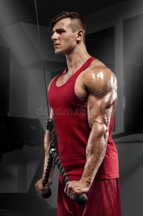 Handsome muscular man working out in gym doing exercises at triceps, strong male stock image