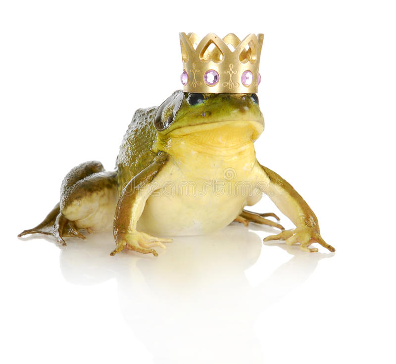 Handsome prince stock images