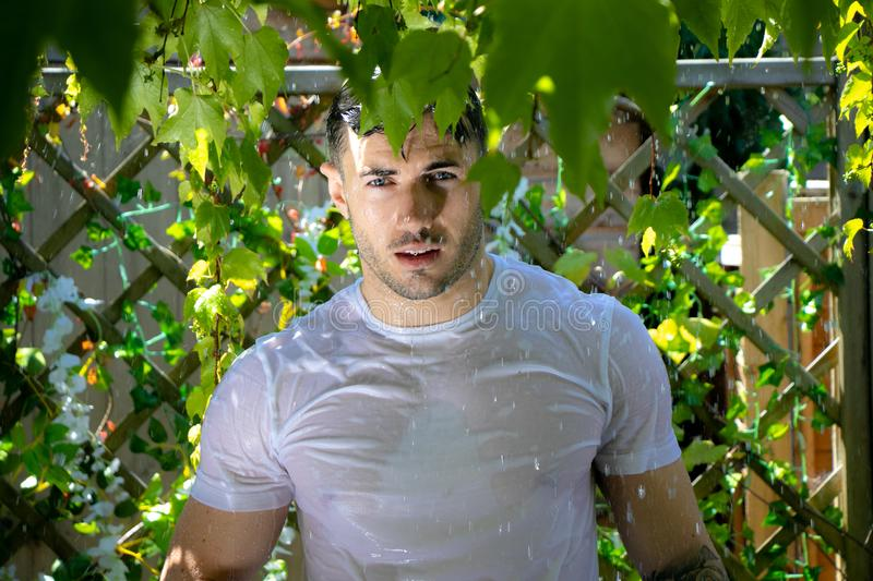 Handsome semi naked man with muscles and bare chest caught in shower of rain in garden royalty free stock photography