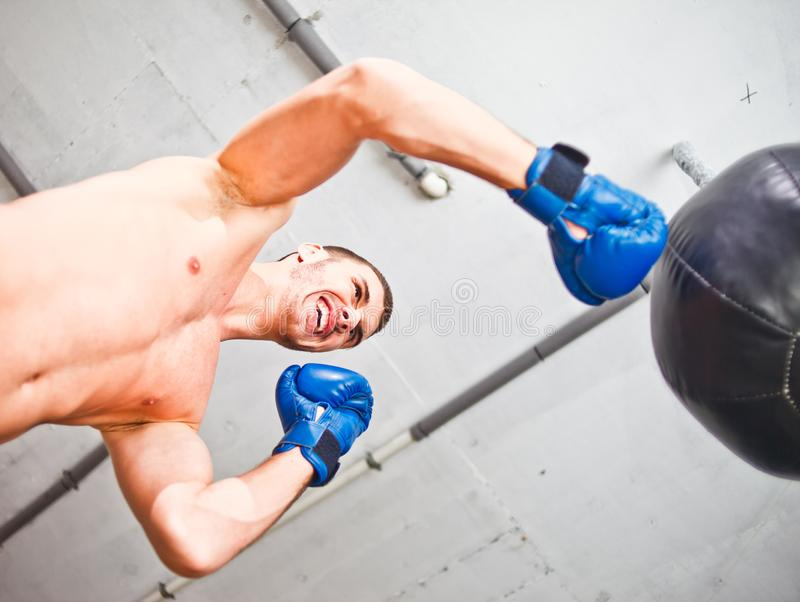 Handsome sports man boxer trains hand punches royalty free stock image