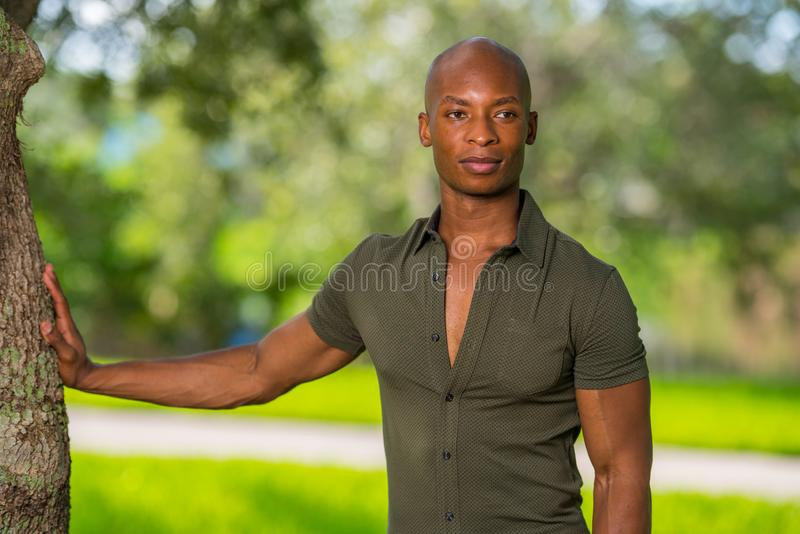 Handsome young African American man posing with hand on tree in park. Mans shirt is unbuttoned to show chest as man glances. Handsome young African American man stock image