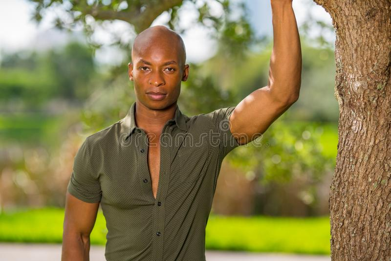 Handsome young African American man posing hand on tree in the park. Mans shirt is unbuttoned to show chest as man lookg at. Handsome young African American man stock photos