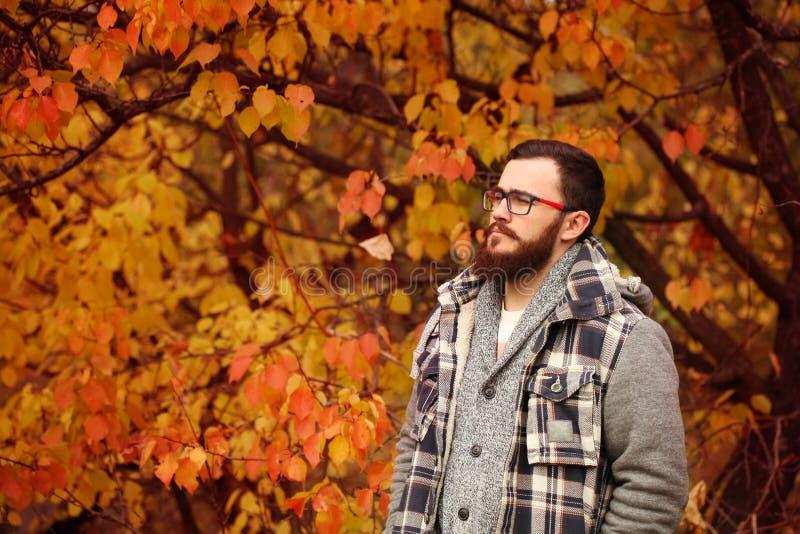 Handsome young man. Autumn portrait stock photo