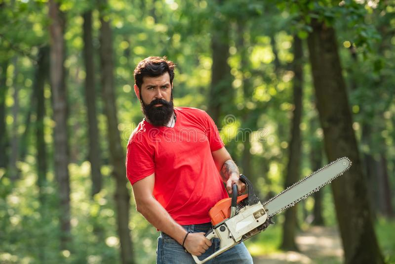 A handsome young man with a beard carries a tree. Illegal logging continues today. Lumberjack in the woods with chainsaw. Axe stock photo