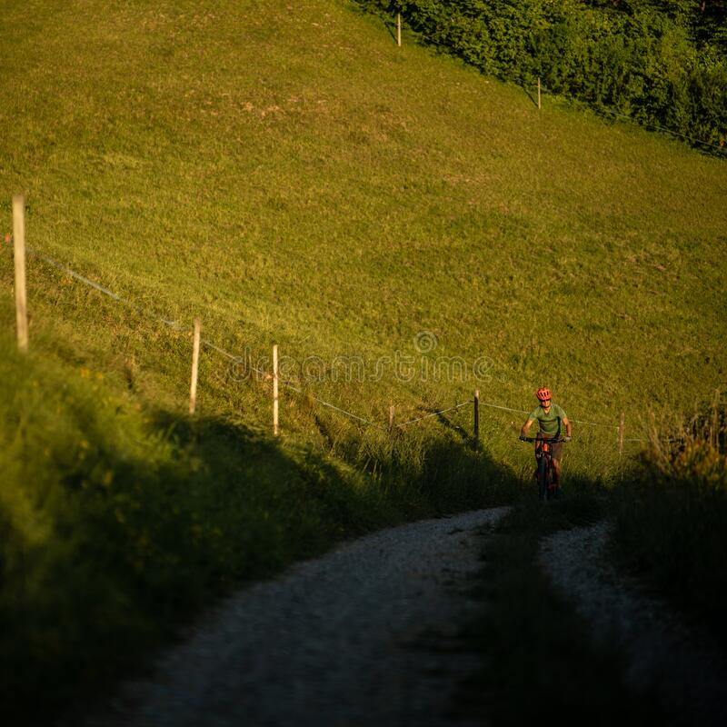Handsome young man biking on a mountain bike royalty free stock photos
