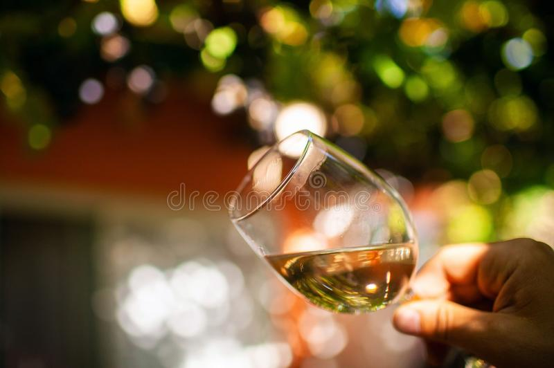 Handsome young man looking glass of wine before drinking in nature. royalty free stock photography