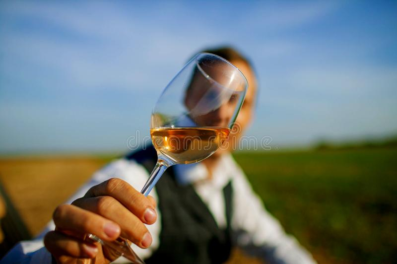 Handsome young man looking glass of wine before drinking in nature. stock photography