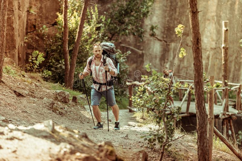 Handsome young man using trail trekking poles royalty free stock photos