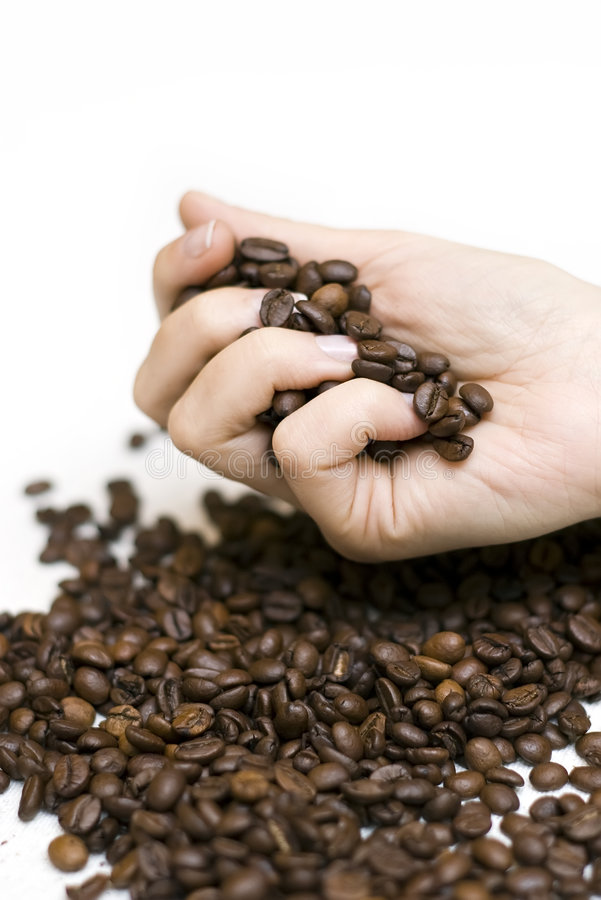 Handströmende Kaffeebohnen stockbild