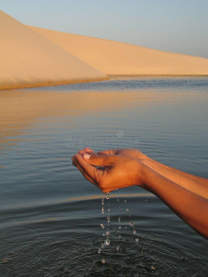 handvatten arkivbild