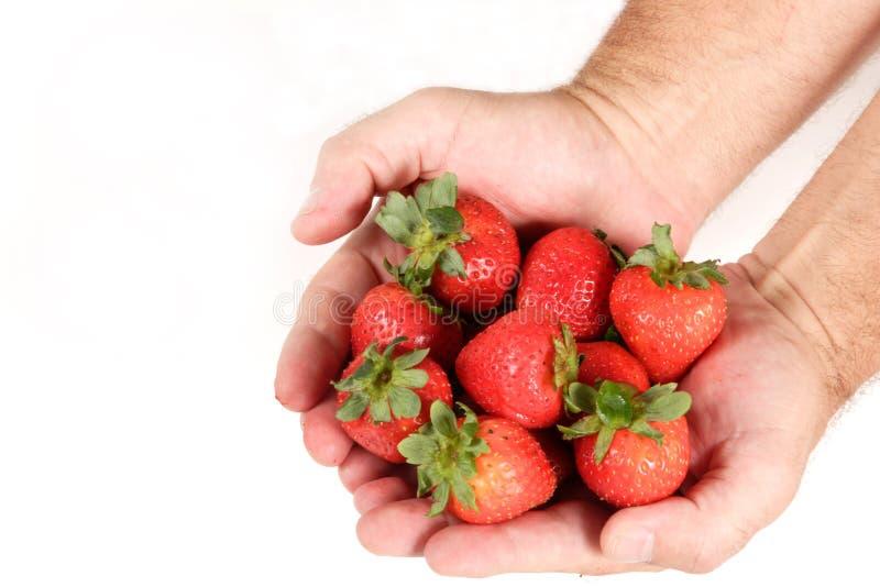 Handvoll Erdbeeren lizenzfreie stockfotografie